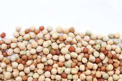String beans Stock Image