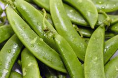 String beans with drop. Close up background royalty free stock photography