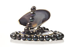 String of black pearls in a sea shell. On white Royalty Free Stock Photography