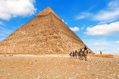 String of camels near the Pyramid of Chephren, Egypt.  stock photos