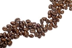 String of coffee beans Stock Image
