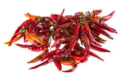 String with dry hot peppers isolated Royalty Free Stock Photography