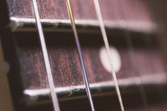 String on fingerboard fretboard macro close up detail Stock Images
