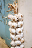 String of garlic bulbs hanging in hungarian rural kitchen Royalty Free Stock Images