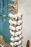 String of garlic bulbs hanging in hungarian rural kitchen Royalty Free Stock Image