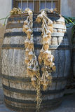 String Of Garlic Hanging From Cask Royalty Free Stock Images