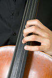 String instrument. Fingers on string instrument Stock Images