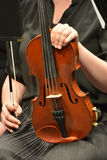 String Instrument 3. String instrument at a college concert Royalty Free Stock Photos