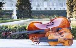 String instruments at sabatini garderns Stock Photography