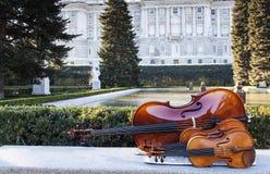 String instruments at sabatini garderns Royalty Free Stock Images