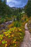 String Lake Trail Royalty Free Stock Photography