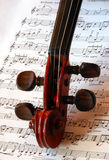 String Music. Violin head with music in background Royalty Free Stock Photo