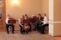 String orchestra Royalty Free Stock Photos