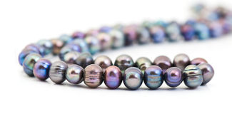String of pearls. Over white royalty free stock image