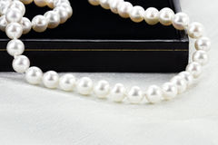 String of Pearls Stock Photography