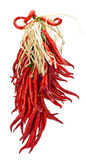 String of red hot peppers drying Stock Photography