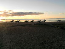 A string of riders on a sunset beach Royalty Free Stock Photos