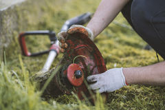 String trimmer cleaning after cutting the grass, workflow stock photography
