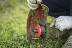String trimmer cleaning after cutting the grass, workflow stock images
