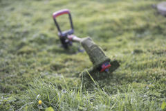 String trimmer lies on mown lawn middle of the yard Royalty Free Stock Image