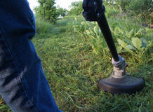 String trimmer mowing weeds. Electric string trimmer cutting weeds for garden path Royalty Free Stock Photo