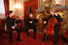 String trio Royalty Free Stock Images