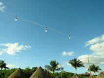 String of vintage light bulbs in Mexican beach garden