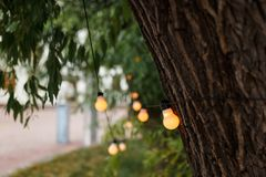 Warm light bulbs at the evening event. String wired with warming Light Bulbs hanging in the area of wedding events celebration in the night stock images