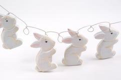 Stringa del coniglietto Immagini Stock