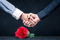 Stringa le mani su una rosa rossa immagini stock