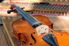 Stringed instrument Stock Image