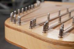 stringed instrumentlithuanian Royaltyfri Fotografi