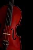 Stringhe musicali Immagini Stock Libere da Diritti