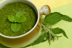 Stringing nettle soup. Over cview of close to stringing nettle soup Stock Photo