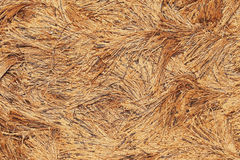 Strings carpet texture Royalty Free Stock Photography
