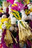 Strings of garlic Royalty Free Stock Photos