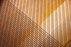 The strings of a musical instrument. End an old piano, which has left only the strings stock photo