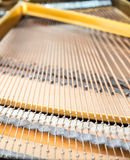 Strings and pins inside classical piano Royalty Free Stock Images