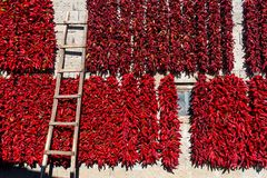 Strings of red peppers dry on village house Royalty Free Stock Images