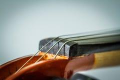 Strings Violin Stock Photo