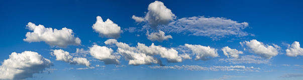 Strip of clouds. Strip of white cumulus clouds in the pure blue sky. As clumps of cotton wool Royalty Free Stock Photo