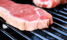 Strip Loin Steaks Stock Images