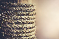 Strip of raw rope textured on old wood for background. Vintage s Royalty Free Stock Photo