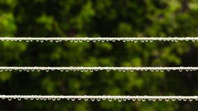 Strip rope for washing laundry with rain drops outdoor. Royalty Free Stock Images