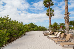 Strip of Sand with Chaise Lounges and Palm Trees. Chaise lounges on a sandy beach under palm trees stock image