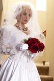 'strip-tease' de la novia foto de archivo libre de regalías
