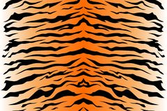 Pattern texture tiger repeat seamless. Vector image. orange black white. Stripe animals jungle tiger fur texture pattern seamless repeating orange yellow black Royalty Free Stock Image