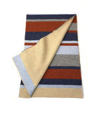 Stripe and Beige Scarf Royalty Free Stock Images