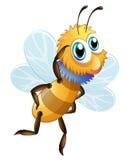 A stripe bumblebee Stock Image