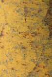 Stripe rust background Royalty Free Stock Image